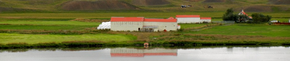 Near Vatnsdalshólar, Iceland