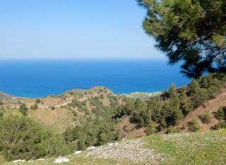 Near Kato Pyrgos