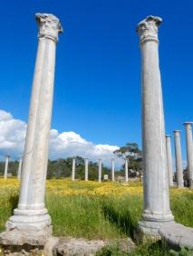 Gymnasium, Salamis