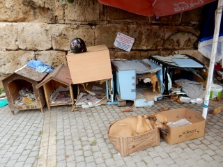 Dog shelter, Girne