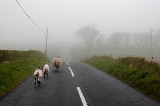 County Antrim