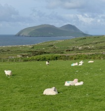 Great Blasket Island, Dingle Way IE
