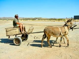 Donkey cart, Damaraland, Namibia