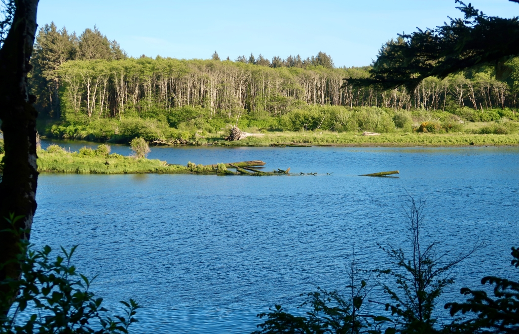 Quileute River